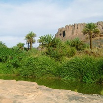 Tipasa with Expert Algeria Roman Algeria travel agency